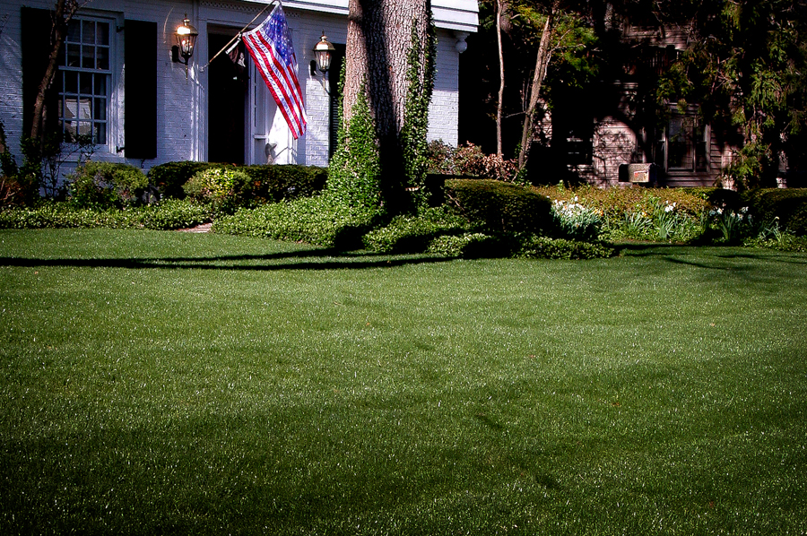 Lamar Missouri Professional Lawn Care