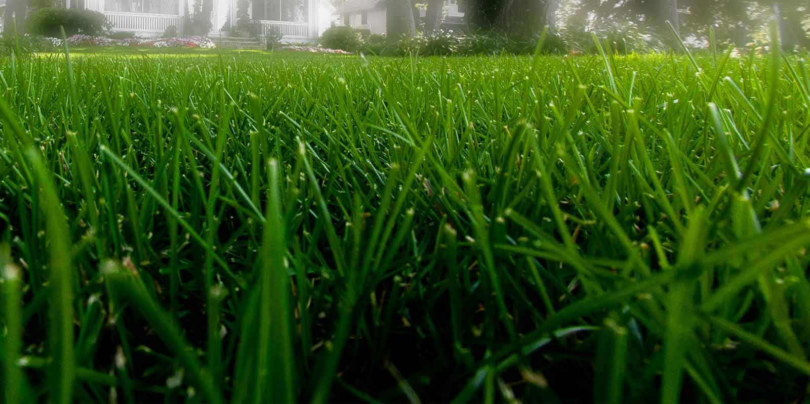 Quality Missouri Lawn Care